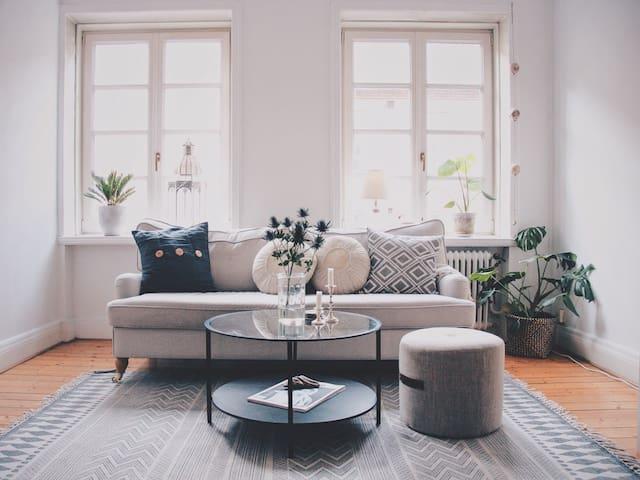 Charming and beautiful apartment in central Malmö - Malmö - Lägenhet