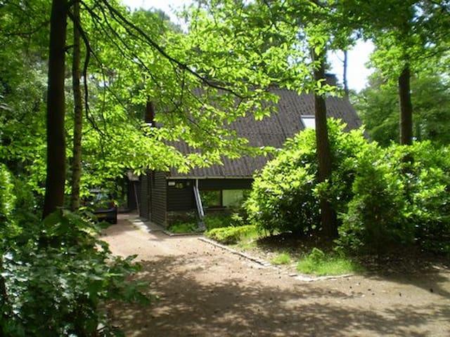 Holiday home de Boshoek with privacy in Eersel - Eersel