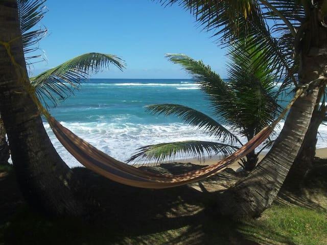 Beachfront beachgoers delight! - Hatillo - Casa