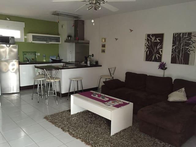 Appartement  tout confort Climatisé - Vauvert - Lägenhet