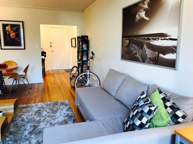 Beautiful, Large 1 BDRM minutes from Manhattan! - Mineola - Apartament