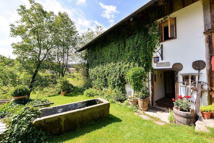 Wunderschöne 2-Zimmer-Ferienwohnung - Neureichenau - Condomínio