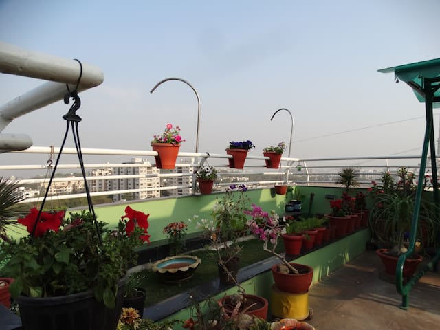 *****Luxuria-Terrace garden Homestay...!!! - Ahmedabad - Daire