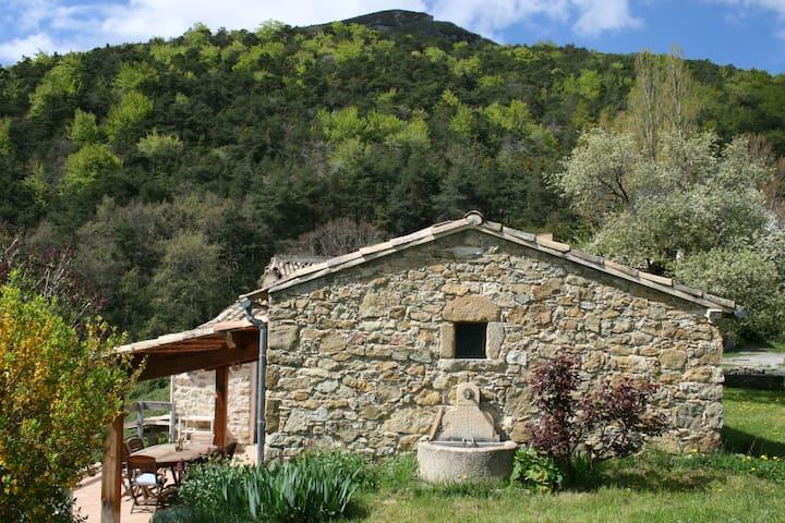 Maison de campagne atypique - Rhône-Alpes - Hus