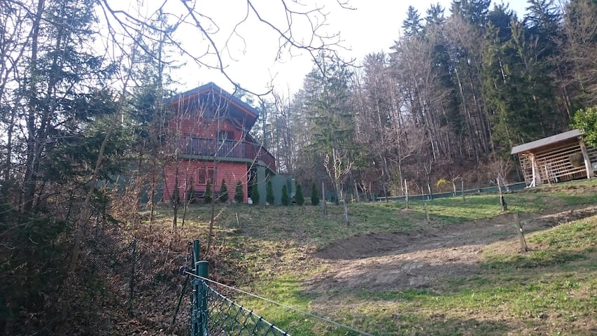 Forest Cabin - Rečica ob Savinji - Houten huisje