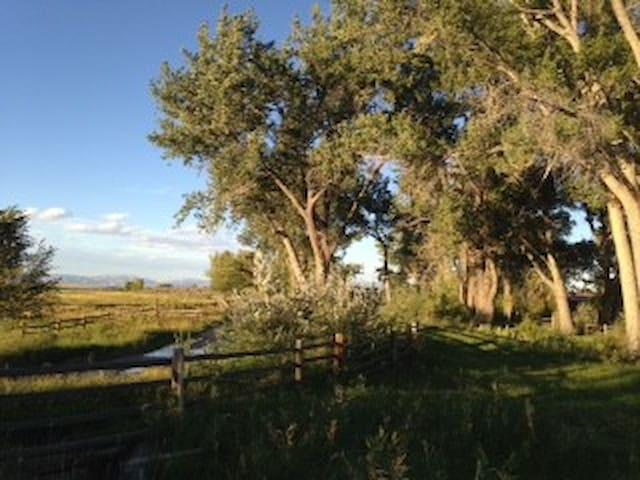 440 Ranch, solar eclipse camping destination - Shoshoni - Tält