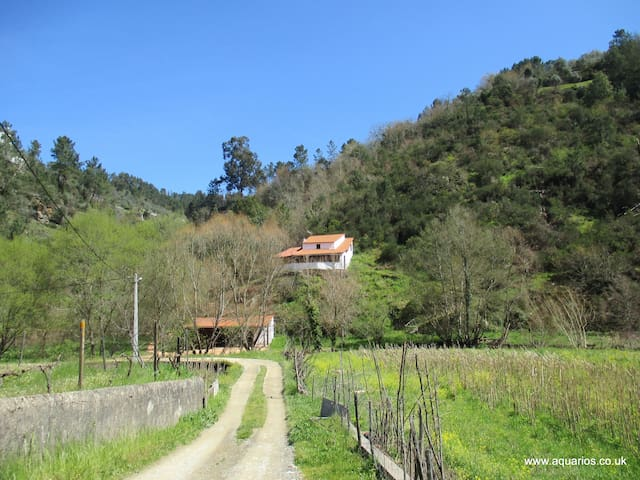 Cosy country cottage by the river near Benfeita - Benfeita - Dom