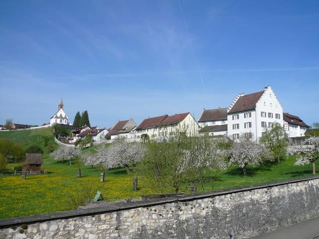 Im Klosterquartier  - Rheinau - Ev