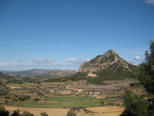 Amazing house w/ views to Els Ports - Horta de Sant Joan - Bed & Breakfast