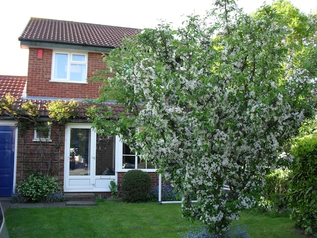 Cosy clean bedroom B&B - Sutton Coldfield - Bed & Breakfast