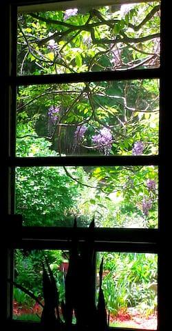 Airy, light and rock gardens - Hamden