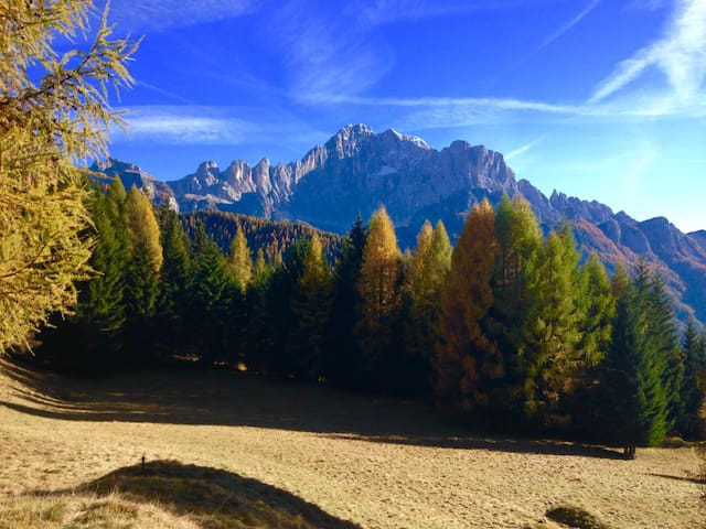 Dolomite Tabià Palue - Sottoguda-palue - Huoneisto