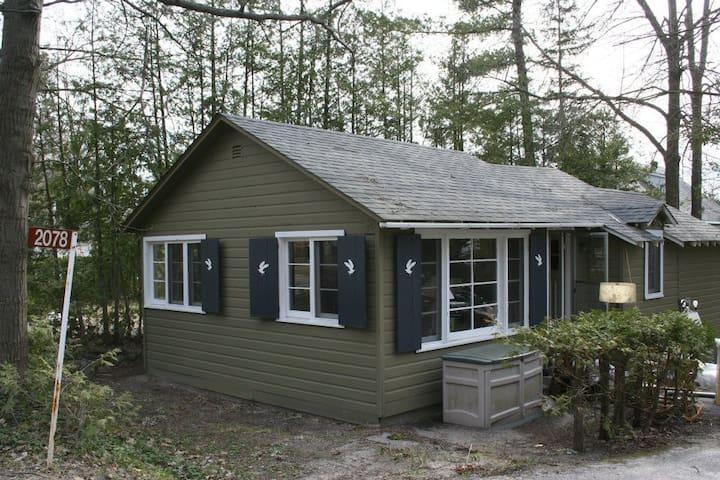Beachside Cottage - Tiny - Houten huisje
