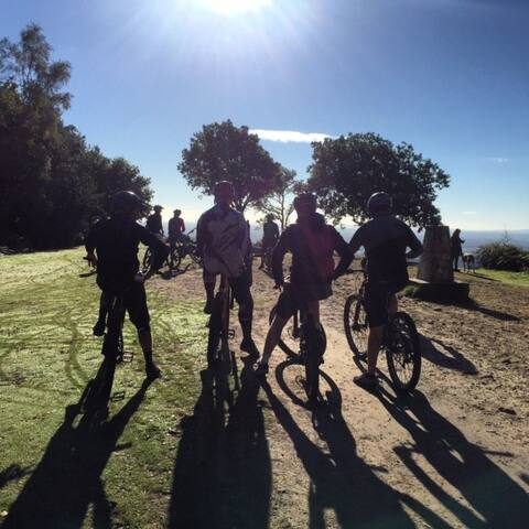 Surrey Hills, Cycling Heaven, Weekend Riding - Effingham