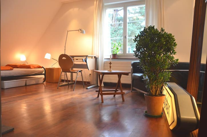 Lovely room in beautiful surroundings, peaceful. - Zürich - Maison