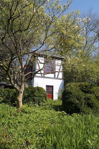 summer house in big garden - 奧斯納布呂克(Osnabrück) - 樹屋