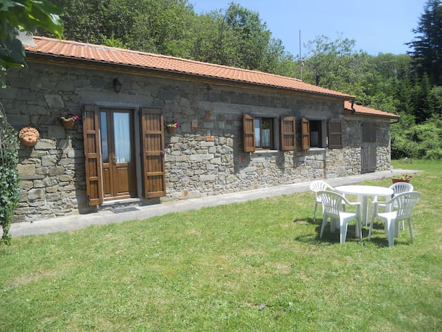 Rustico in montagna: affitto per uso turistico - Marliana