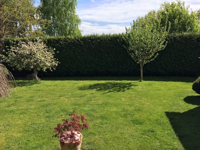 Large, bright double in a warm, friendly house - Taunton - Hus