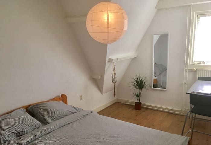 GREAT TYPICAL DUTCH ROOM-10MIN FROM UTRECHT CENTRE - Utrecht - Casa