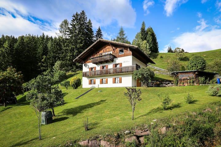 Waldhaus Obereggen-skicenter(1km)/hiking trail - Nova Ponente - Leilighet