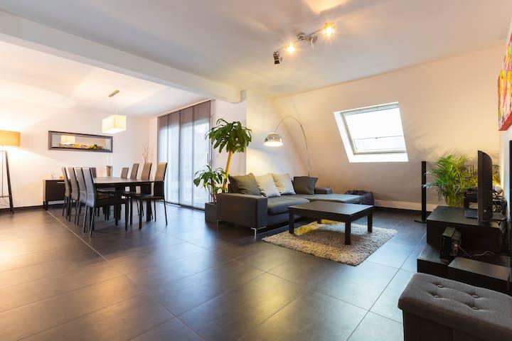 Maison moderne proche Mulhouse Bâle - Chalampé - Hus