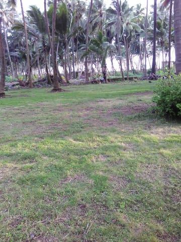 Samudra, Beach side farm house (Private Room 2) - Arnala