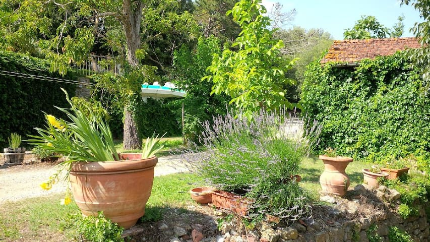 Lemons house in Tuscany with pool - Pieve A Presciano - Дом