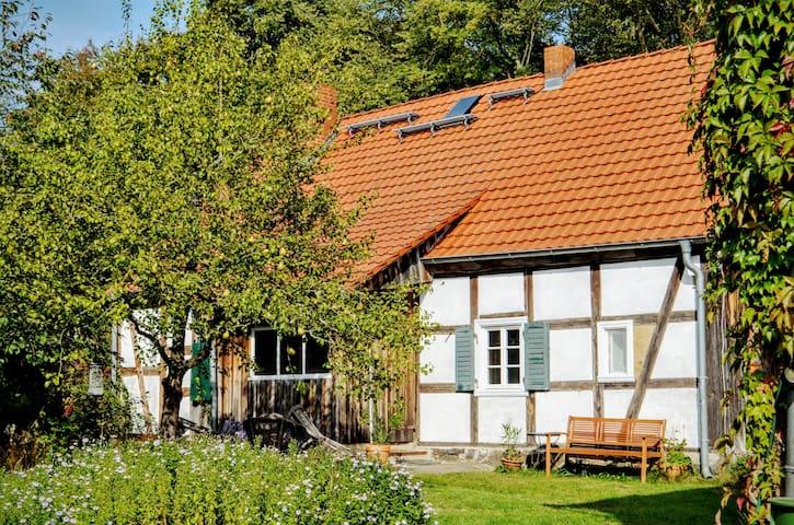 Das Alte Köhlerhaus - mit Sauna - ganzes Haus - Temmen-Ringenwalde - Huis