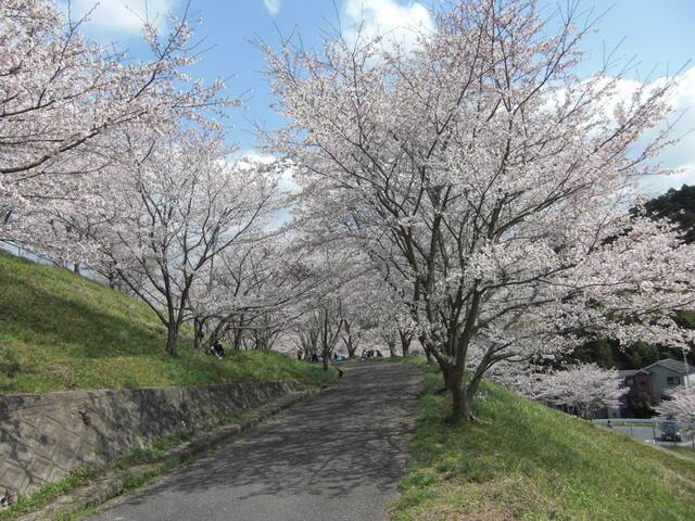 Quiet Residential Area Near Koya Line - Kawachinagano-shi