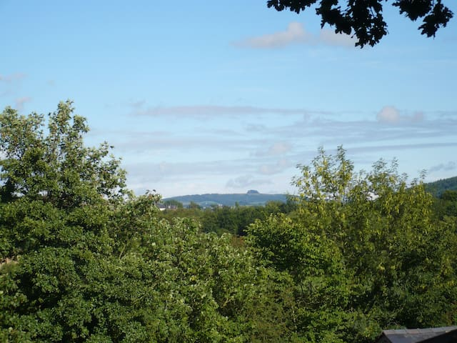 The Granary, with views over farmland to River Wye - Herefordshire - Appartement