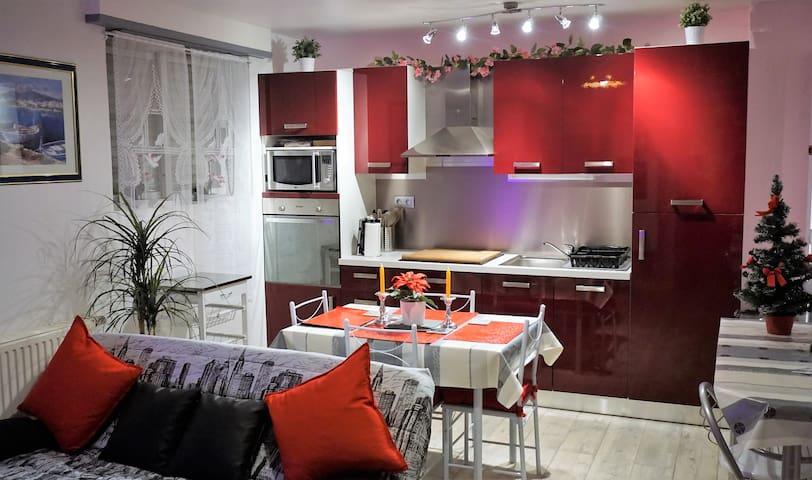 """appartement vacance """"fleuri"""" - Wasselonne - Appartement"""