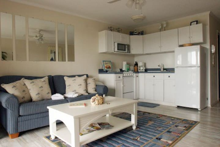 Oceanfront Condo in Private Resort - Hilton Head Island - Appartement