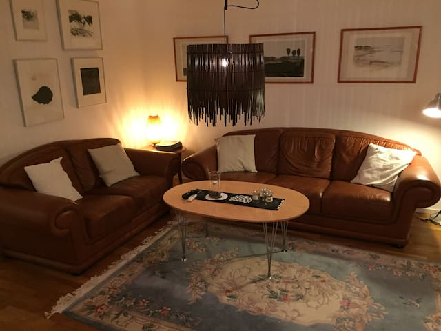 Two bedrooms in large flat in the City center! - Västerås - Departamento