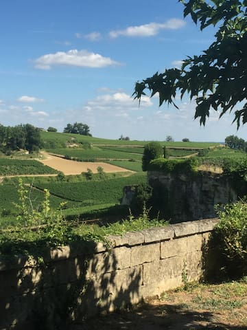 House - heart of Saint Emilion with amazing view - Saint-Émilion - Casa
