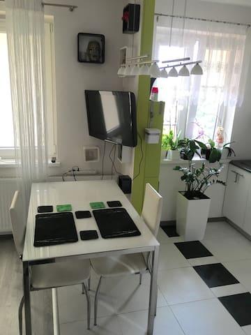 New Privet Apartment + Kitchen - Wieliczka - 公寓