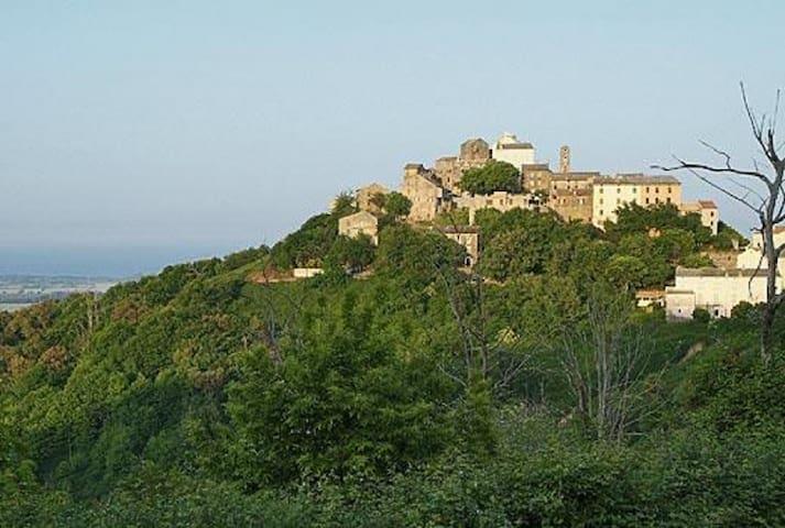 Belle maison de village avec vue sur la mer. - Castellare-Di-Casinca - Huis