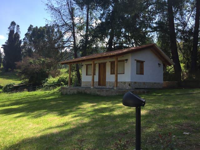 Cabaña campestre de pino nueva y acogedora - Paipa - Blockhütte
