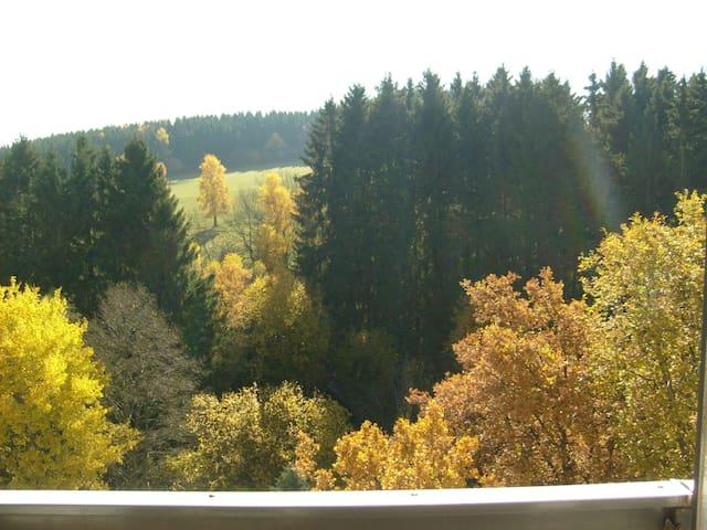 Wohnung mit Balkon und Waldblick - Brilon - Condo