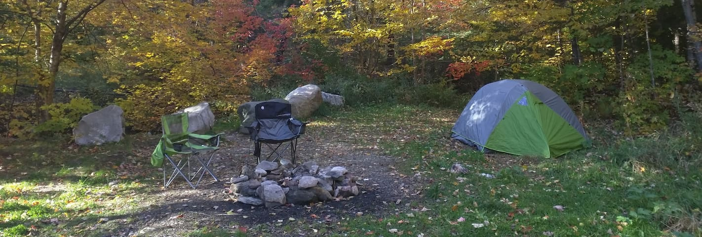 Primitive Tent Camping - Bring your own gear - Danville - Tent