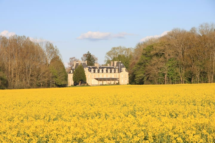 Family Castle in Fontenay - Tendron - Castillo
