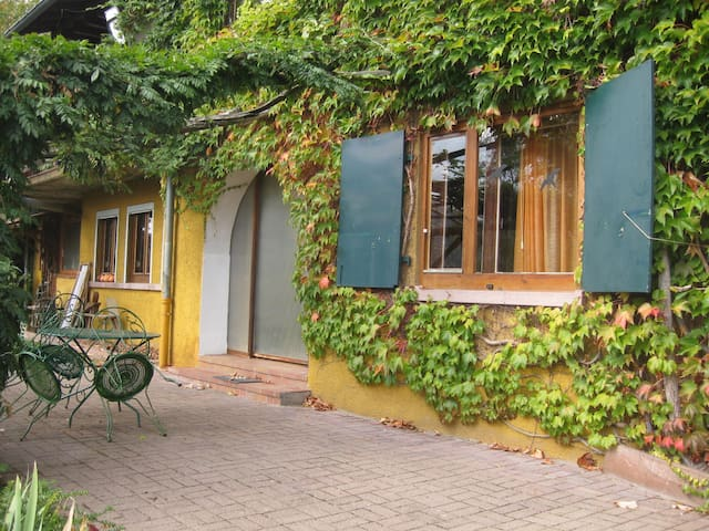 Charmant petit appartement à flanc de colline - Gunsbach