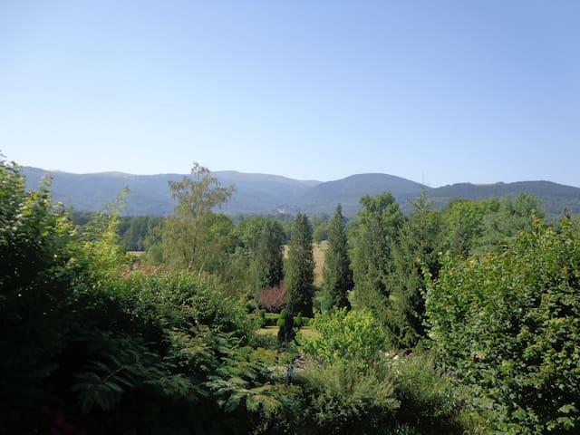 Quiet in nature facing mountains 1-English Spanish - Serres-sur-Arget - Pension