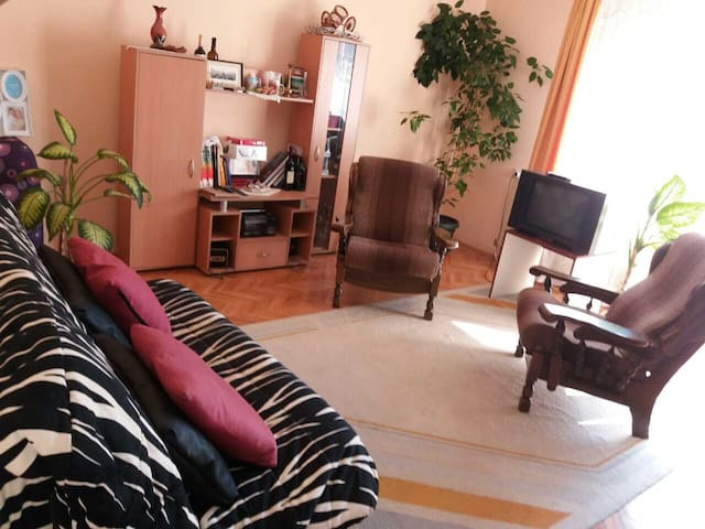 Lola's home, quiet, close to St. Sava & Chair Park - Niš - Stadswoning