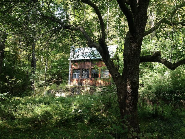 Cabin in the Woods; off-grid - Sharon - Chalet