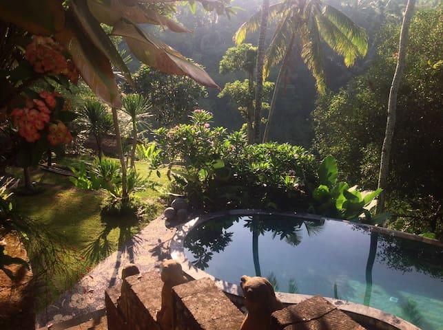 Luxurious villa, amazing view, Ubud - Tegallalang - Villa