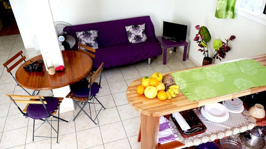Comfortable cosy apartment - Le Lamentin - Lägenhet