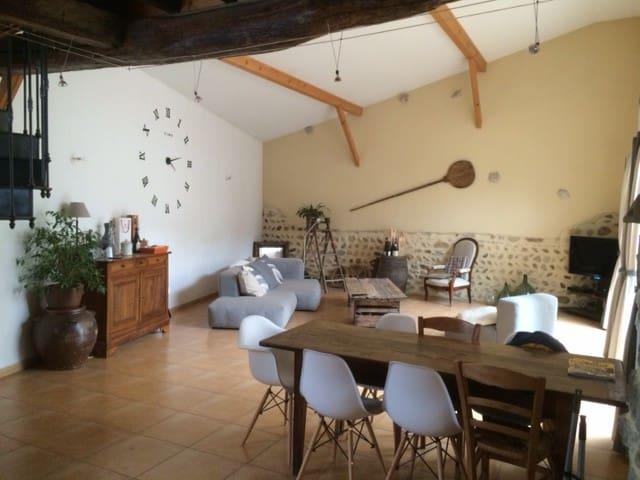 Maison de ville avec jardinet st denis centre - Saint-Denis-en-Bugey - Huis