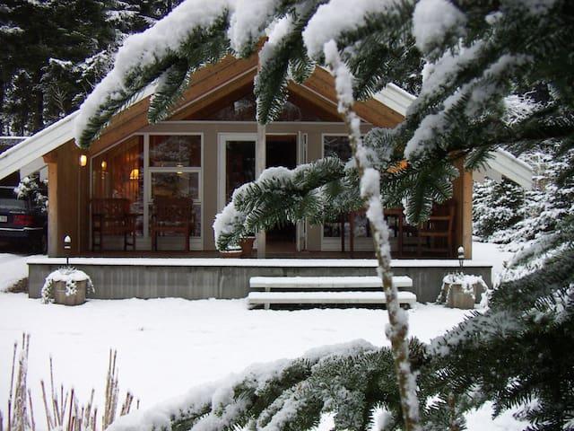 Cosy Forest Cabin - Toftlund - Houten huisje
