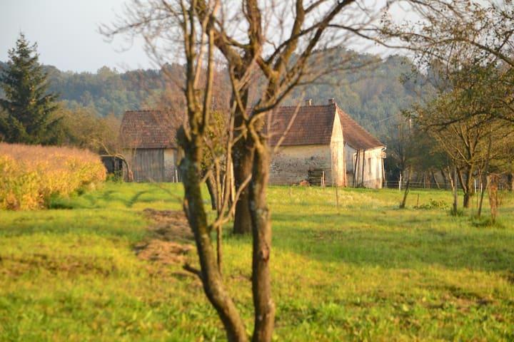 Nani Mári House - Kondorfa - Hus