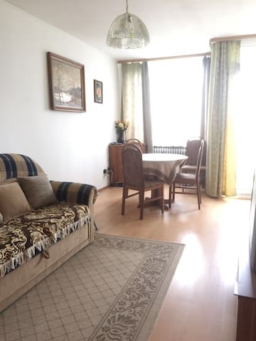 Studio with Balcony (35 min to Hannover Messe) - Celle - Apartament